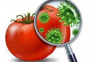 طريقة إزالة المبيدات من ثمار الفواكه و الخضروات نهائيا لتصبح كأنها عضوية