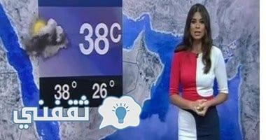 صورة مذيعة سكاى نيوز عربية ترتدى علم مصر