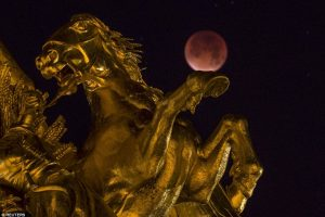 صور رائعة للقمر الدامي العملاق الذي ظهر في السماء فجر اليوم