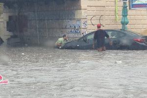بالصور ثلاث وفيات بالاسكندرية اليوم بسبب أسلاك كهربه الترام ونفوق حصان