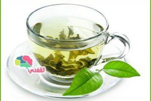 فوائد وأضرار تناول الشاي الأخضر على جسم الإنسان