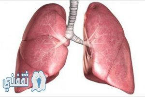 كيف تقوم بتنظيف الرئتين من التدخين والسموم خلال 3 أيام بطريقة صحية