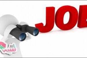 تعلن وزارة الدولة للتنمية المحلية عن حاجتها لشغل وظائف بالوزارة
