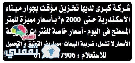 وسيط الاسكندرية 24