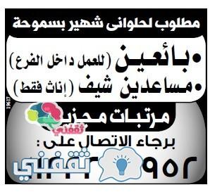 وسيط الاسكندرية 25