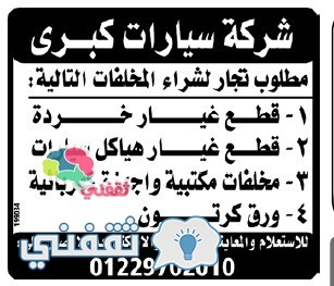 وسيط الاسكندرية 30