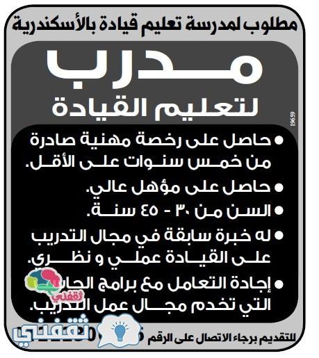 وسيط الاسكندرية 32