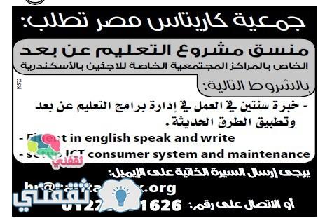 وسيط الاسكندرية 39