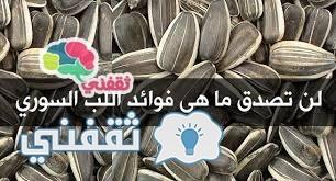 اللب السوري