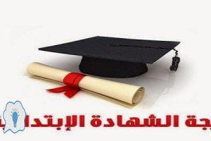 نتيجة الشهادة الابتدائية الصف الدراسي الثاني 2016 لجميع محافظات مصر برقم الجلوس ـ محدث