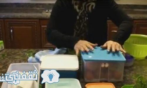 بالفيديو | تخزين الخيار والطماطم في الفريزر لأكثر من شهر بطريقة سهلة