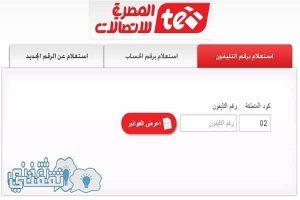 أدفع فاتورة التليفون المنزلى لشهر يناير 2017 من موقع المصرية للاتصالات الرسمى billing.te.eg