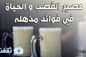 فوائد صحية مذهلة تجبرك على تناول عصير القصب يوميا