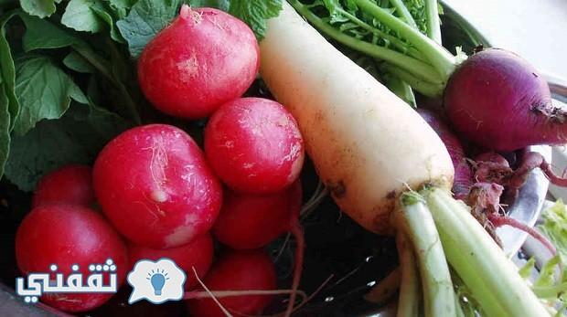 The-radish