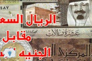 سعر الريال السعودي اليوم الجمعة 26-8-2016 في السوق السوداء والبنوك أسعار الريال السعودي مقابل الجنيه المصري