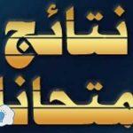 نتائج الصف السادس الاعدادي العراقية 2017 نتيجة العلمي والادبي جميع محافظات العراق عبر موقع ناجح ووزارة التربية العراقية والسومرية نيوز وموقع الازدهار