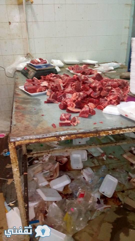ضبط أطنان من اللحوم الفاسدة بالجيزة