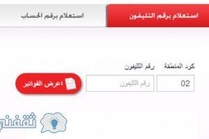 فاتورة التليفون الأرضي 2016: استعلم عن فاتورة تليفونك الأرضي من موقع المصرية للاتصالات