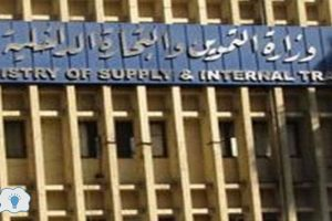 وزارة التموين تعلن رسميا الفئات المستبعدة من دعم سلع التموين في المرحلة الأولى من تنقية البطاقات