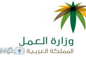 وزارة العمل والتنمية الاجتماعية .. تودع مبالغ دعم الكهرباء فبراير القادم في حسابات مستفيدي الضمان الاجتماعي