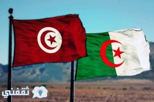 موعد مباراة الجزائر وتونس الخميس 19 يناير وتشكيل الفريقين وتردد القناة المجانية الناقلة