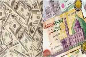 سعر الدولار اليوم الاثنين السابع عشر من يوليو، والدولار يرتفع من جديد في البنوك المصريه