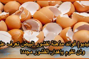 استخدامات غير عادية ومفيدة جدا لقشر البيض لن ترمي قشر البيض بعد اليوم