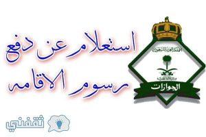 الاستعلام عن تسديد رسوم تجديد الاقامة وزارة الداخلية السعودية الاستعلام العام عن رصيد مدفوعات الخدمات المتبقي