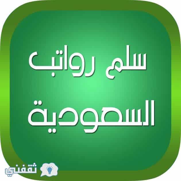 هيكل الرواتب الجديد 1439.. تعرف علي سلم الرواتب لكادر الجامعات ونظام الجامعات الجديد
