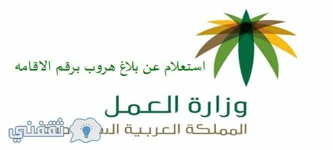 الاستعلام عن بلاغ الهروب برقم الهويه مكتب العمل السعودي