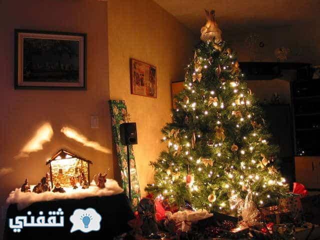 اكتب اسمك على شجرة الكريسماس : اكتب اسمك وشارك من تحب فرحة راس السنة الجديدة