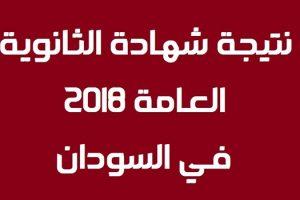 نتائج الشهادة الثانوية في السودان 2018 برقم الجلوس عبر موقع وزارة التربية والتعليم السودانية