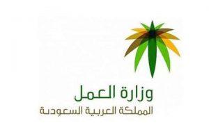 رابط الاستعلام عن موظف سعودي برقم الهوية موقع وزارة العمل والتنمة الإجتماعية www.mol.gov.sa