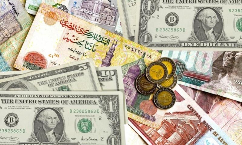 سعر صرف الدولار مقابل الجنيه في السنة المالية الحالية