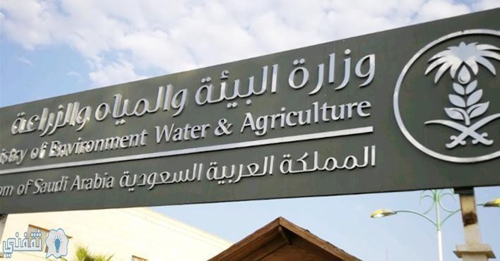 رابط دفع فاتورة المياه إلكترونيا بالمملكة عبر موقع وزارة البيئة والمياه الزراعية خلال دقائق ثقفني