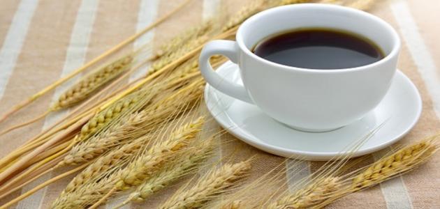 قهوة الشعير