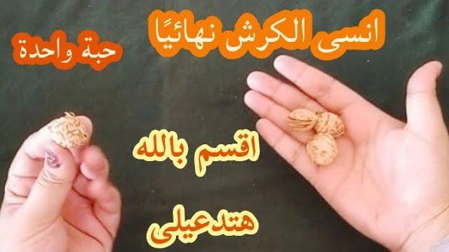 حبوب ناسفة دهون البطن والأرداف والكرش 3 حبات يومياً لتخسيس الجسم وحرق دهون الجسم