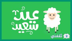 رسائل تهنئة عيد الأضحى المبارك جديده