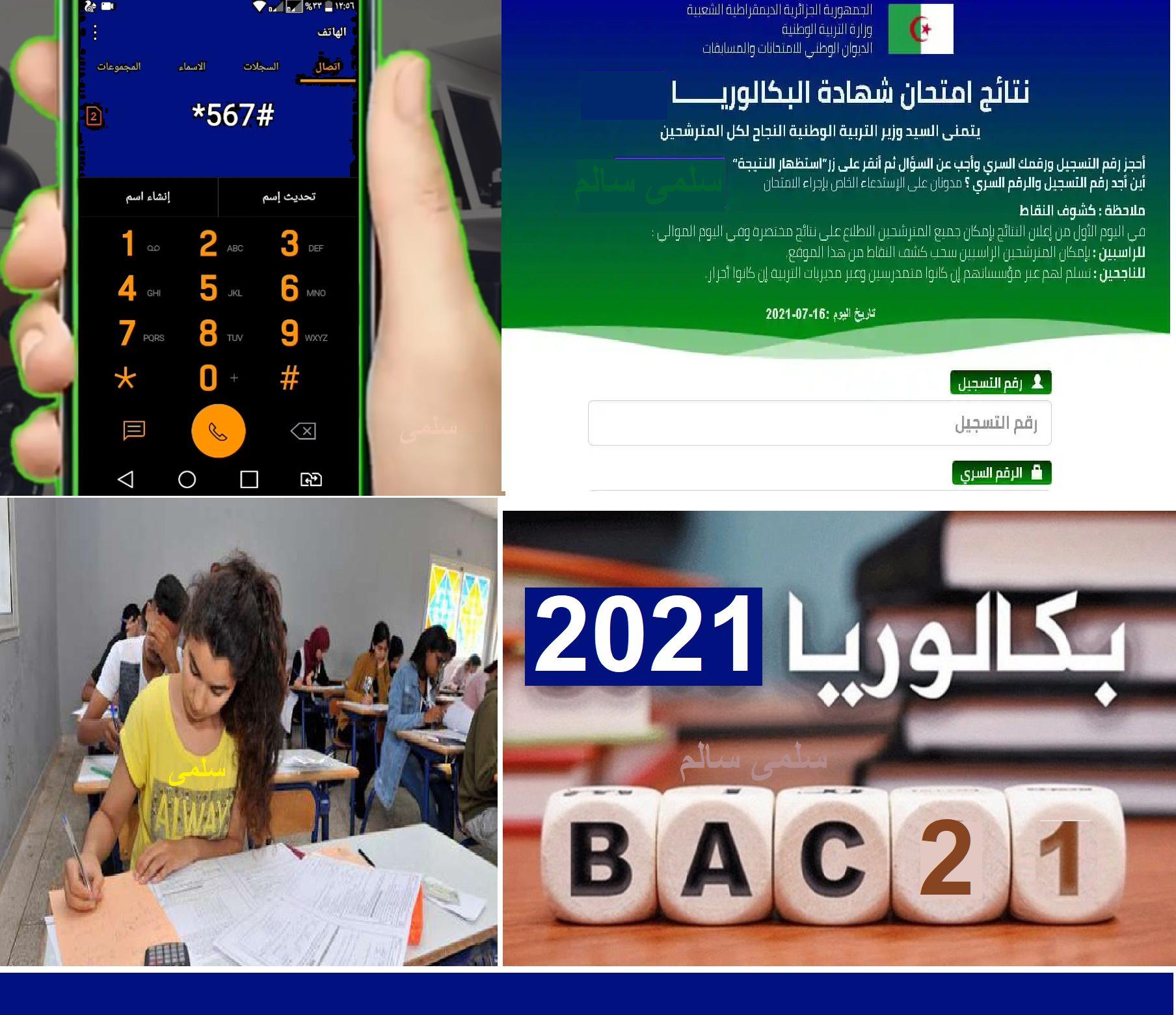 bac.onec.dz resultat موقع نتائج شهادة البكالوريا 2021 بالهاتف النقال ورابط الديوان الوطني